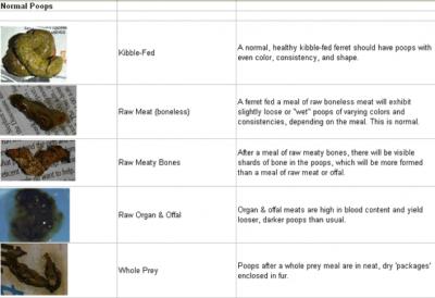 Stool Chart 2