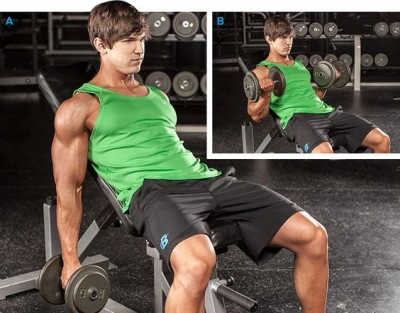 Cara Incline Curl