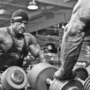 Terma Latihan Bebanan